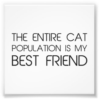 The Entire Cat Population Is My Best Friend Art Photo