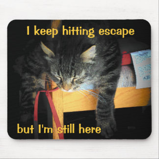 The Escape Button Is Not Working Sad Cat Mouse Pad