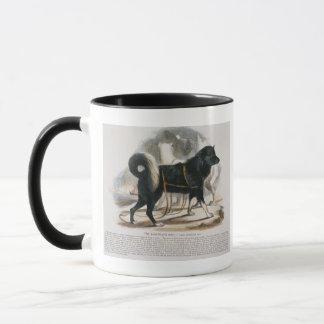 The Esquimaux Dog (Canis familiaris) educational i Mug