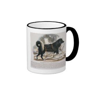 The Esquimaux Dog (Canis familiaris) educational i Ringer Mug