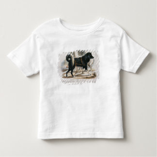 The Esquimaux Dog (Canis familiaris) educational i Toddler T-shirt