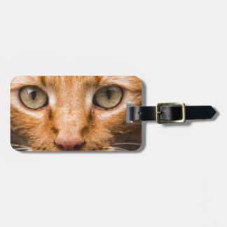 The Essence of a Cat's Look Luggage Tag