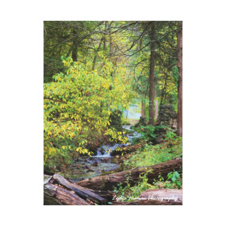 The Essence of Serenity Canvas Print