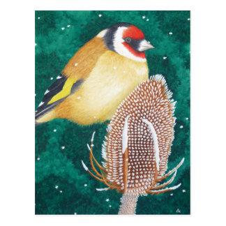 The European Goldfinch Postcard
