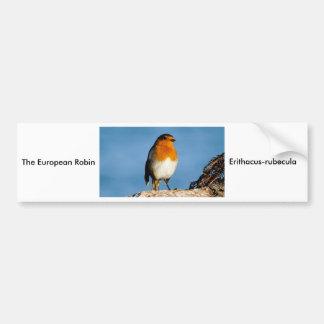 The European Robin Bumper Sticker