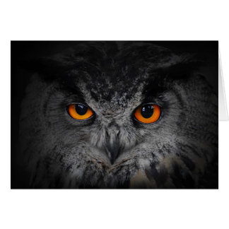 The Evil Eyes. ( Eagle Owl, Bubo Bubo) Greeting Cards