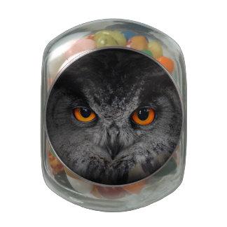 The Evil Eyes. ( Eagle Owl, Bubo Bubo) Glass Jars