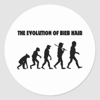 The Evolution of B Hair Classic Round Sticker
