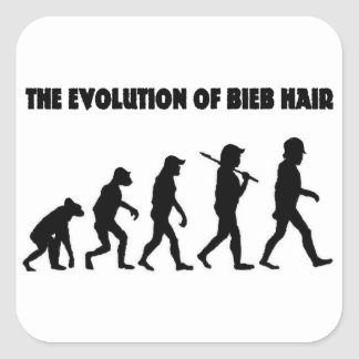 The Evolution of B Hair Square Sticker
