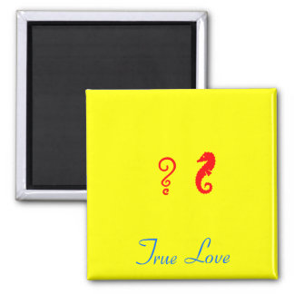 The Existential Seahorse_True Love 2 Inch Square Magnet