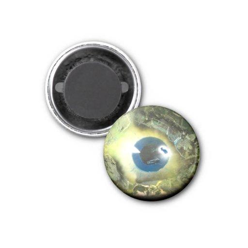 The Eye 1 Inch Round Magnet
