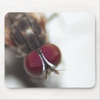 The Eye of the Fly Mouse Pad