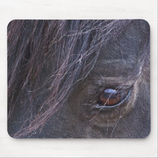 The Eye of the Horse Mouse Pad