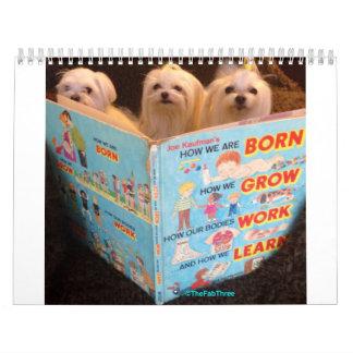 The Fab Three Fabulous year Calendar