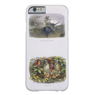 The Fairy Queen's Messenger, and Elf and Owls, ill Barely There iPhone 6 Case