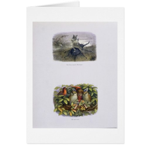 The Fairy Queen's Messenger, and Elf and Owls, ill Greeting Card
