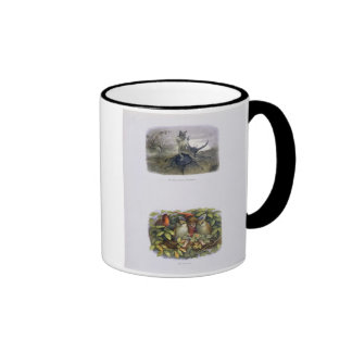 The Fairy Queen's Messenger, and Elf and Owls, ill Ringer Coffee Mug
