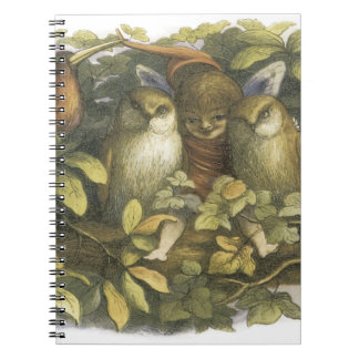 The Fairyland 1870 Fairy With Owls Spiral Notebooks