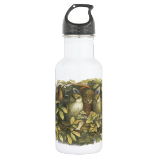 The Fairyland,1870 Fairy With Owls 18oz Water Bottle