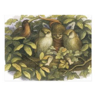 The Fairyland,1870 Fairy With Owls Post Card