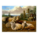 The faithful shepherds postcard