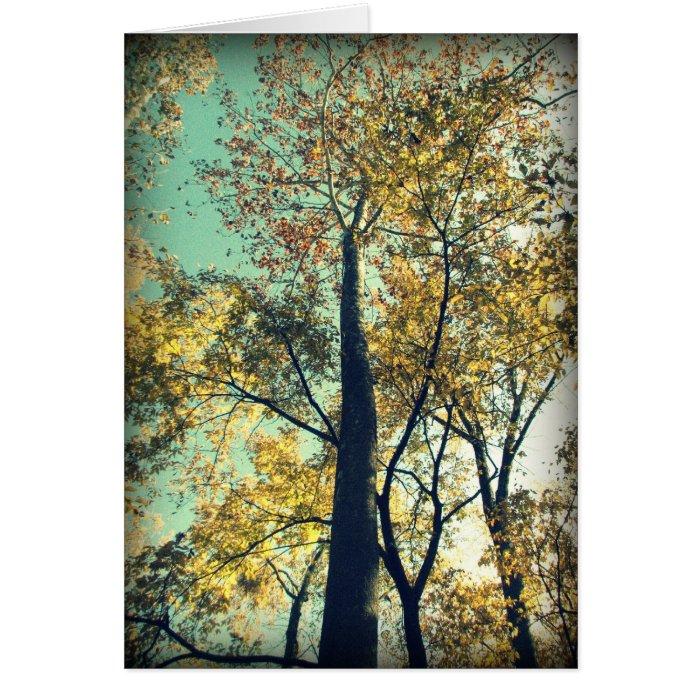 the fall trees card