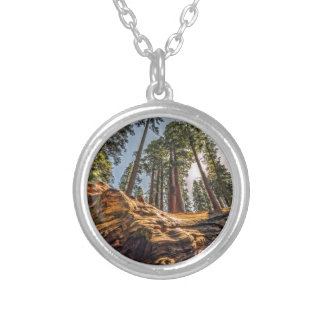 The Fallen Redwood Necklace