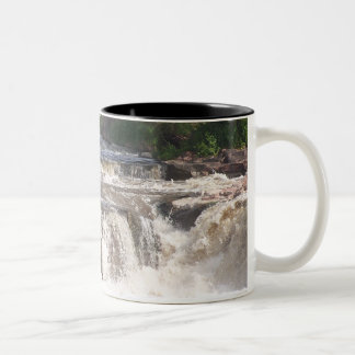 The Falls Mug