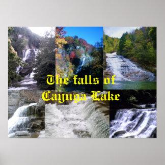 THE FALLS OF CAYUGA LAKE poster
