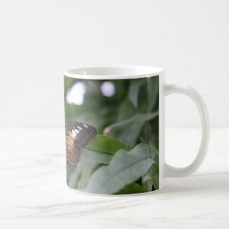 The Falter Coffee Mugs