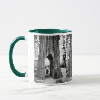 The Famous Bicycle Tree of Snohomish Mug