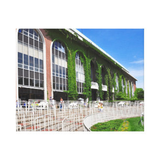 The famous Vines in the Paddock at Belmont Park Stretched Canvas Print
