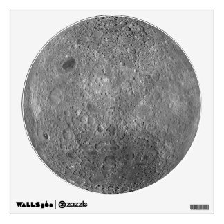 The Far Side Of The Moon Wall Decal