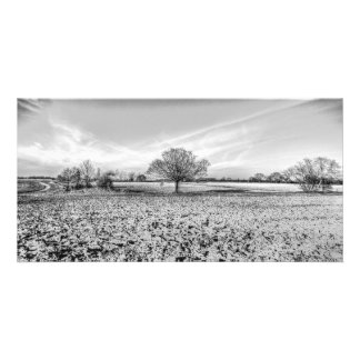 The Farm Tree Card