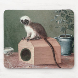The Favourite Monkey of Carl Linnaeus Mouse Pad