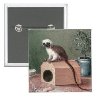 The Favourite Monkey of Carl Linnaeus Pinback Button