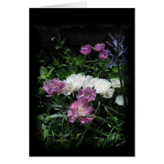 The Feathered Tulips Greeting Card