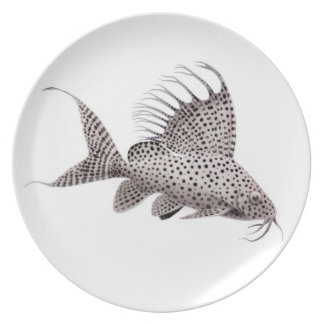 The Featherfin Synodontis Catfish Plate