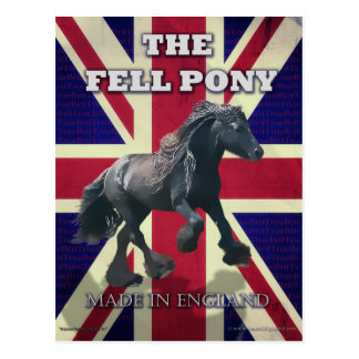 """The Fell Pony -- True Brit -- Made In England"" Postcard"