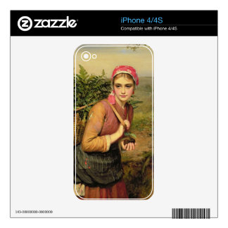 The Fern Gatherer Decals For The iPhone 4S