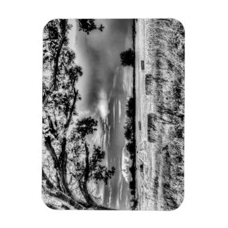 The Field Beyond The Tree Rectangular Magnet