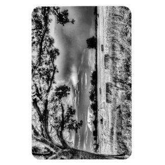 The Field Beyond The Tree Magnet