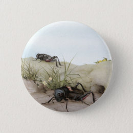 THE FIELD CRICKET BUTTON