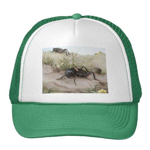 THE FIELD CRICKET TRUCKER HAT