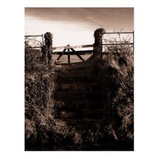 The field steps postcard