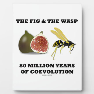 The Fig The Wasp 80 Million Years Of Coevolution Photo Plaques