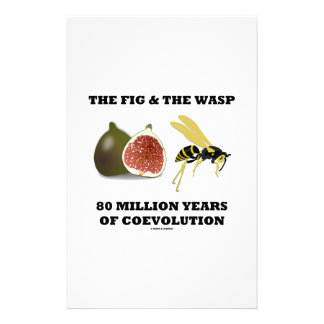 The Fig & The Wasp 80 Million Years Of Coevolution Stationery