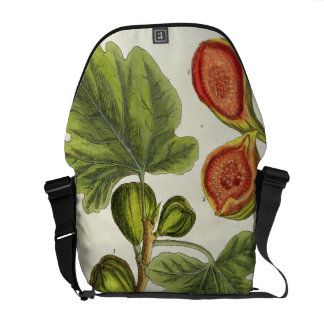 The Fig Tree plate 125 from A Curious Herbal p Courier Bag