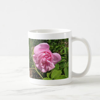 THE FIRST SENIOR PROM ROSE ON MY ROSEBUSH COFFEE MUG