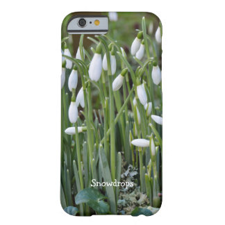 The First Snowdrops of Spring in Cornwall Barely There iPhone 6 Case